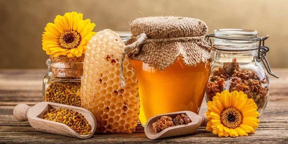 Borov med kao prirodni lek za zdrava pluća